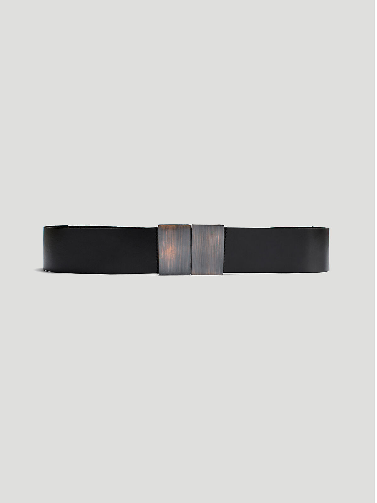 Golden Clasp Belt