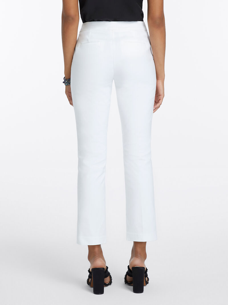 Perfect Pant Front Zip Ankle image number 3