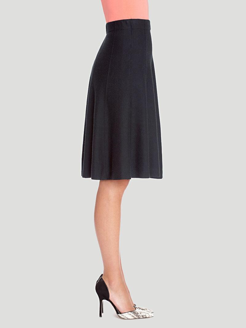 Paneled Twirl Skirt image number 2