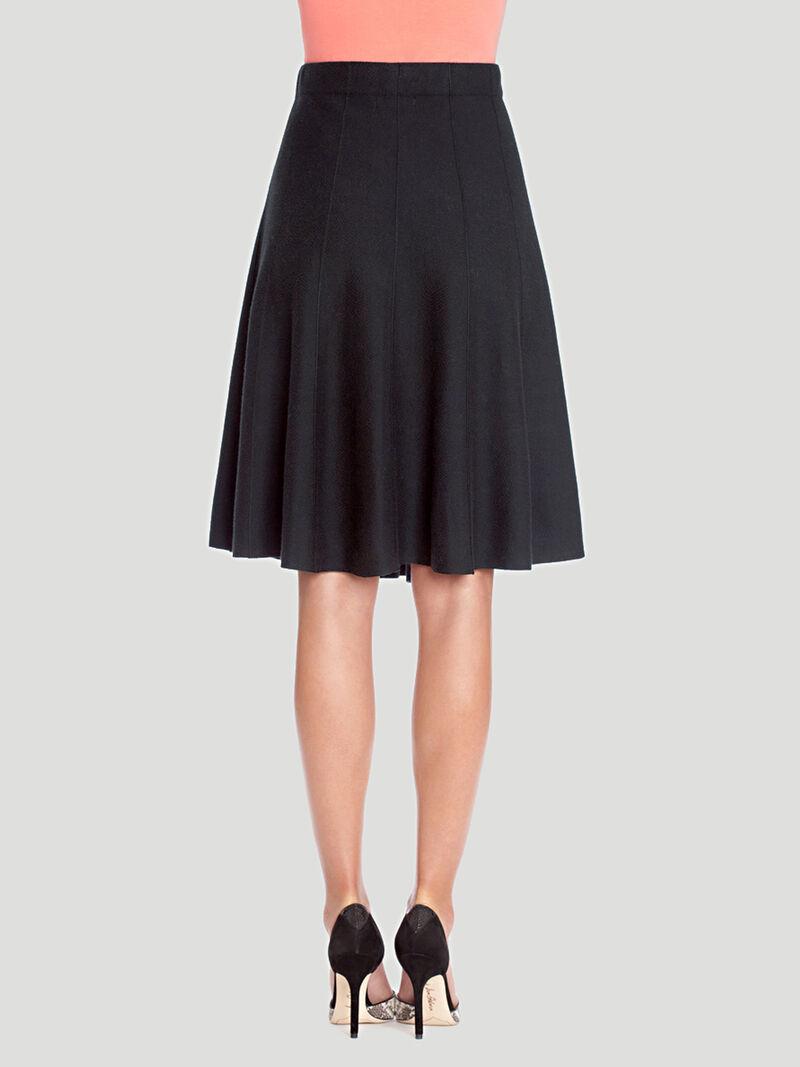 Paneled Twirl Skirt image number 1