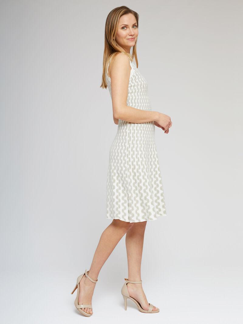 Spring Fling Twirl Dress image number 1