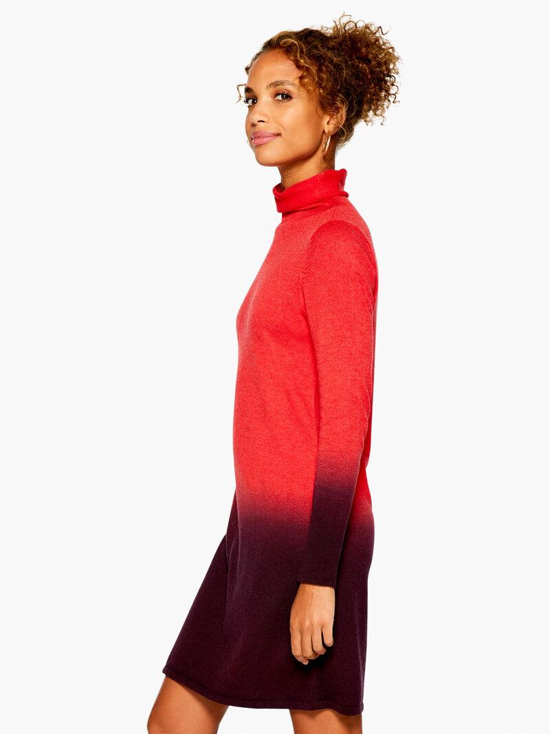 Ombre Vital Turtleneck Dress